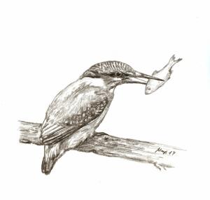 eisvogel - Arbeitskopie 2